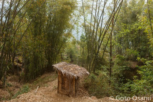 竹林の中の風流な厠